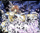 Sakura scan.jpg