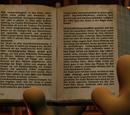 Buch aus Moorhuhn Adventure - Der Schatz des Pharao