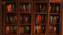 Bücherregal.png