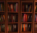 Bücherregal (Buch)