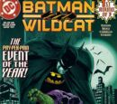 Batman and Wildcat Vol 1 1