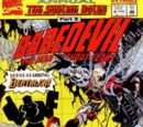 Daredevil Annual Vol 1 8/Images