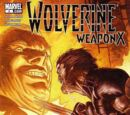 Wolverine: Weapon X Vol 1 5