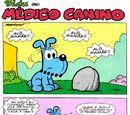 Médico Canino