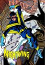 Nightwing 0001.jpg