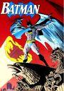 Batman 0072.jpg