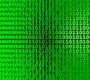 Binary War