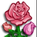 Pink Rose-icon.png