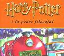 Llibres (món real)