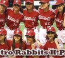 Metro Rabbits H.P.