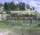 Errand: Flower Seeds