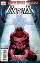 Dark Reign The List - Punisher Vol 1 1.jpg