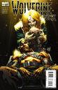 Wolverine Weapon X Vol 1 7.jpg