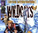 Divine Intervention: Wildcats Vol 1 1