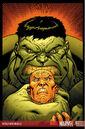 World War Hulk X-Men Vol 1 1 Textless.jpg