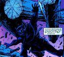 Batman: Shadow of the Bat Vol 1 29/Images