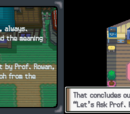 Pokémon Platinum/Section 1