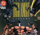 Batman: Dark Knight Gallery Vol 1 1
