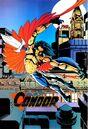Black Condor RK 01.jpg
