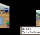Pokémon HeartGold and SoulSilver (Part 1)