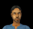 Sims who work in the career
