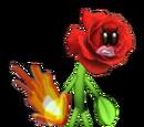 Rosie Redburn