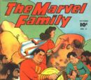 Marvel Family Vol 1 5