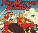 Marvel Family Vol 1 8