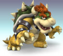 Bowser/Gallery