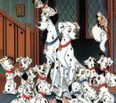 Dalmatian Puppies/Gallery
