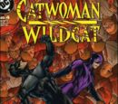 Catwoman/Wildcat Vol 1 4