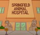 Springfield Animal Hospital