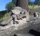 Draco bambergensis
