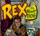 Adventures of Rex the Wonder Dog Vol 1 9