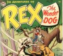 Adventures of Rex the Wonder Dog Vol 1 17