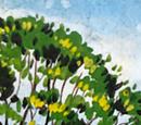 River Els