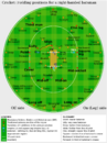 Cricket fielding positions2.png