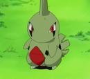 Pokémon del anime