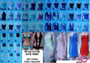 Phoca thumb l ep3 clothes female.jpg