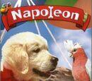 Napoleón (1995)