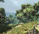 Argaanská džungle
