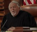 Fictional judges
