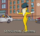 Swedish traffic officer