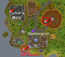 Rimmington Dungeon