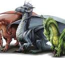 Dragon (Dungeons & Dragons)