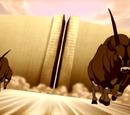 Gemsbok Bull
