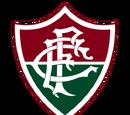 Braziliaanse clubs