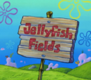 Tips for Jellyfish Fields