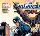 Captain America and the Falcon Vol 1 10
