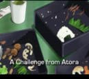 A Challenge from Atora